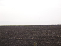 Plot of land for sale near Burgas